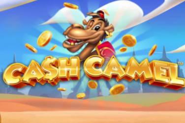 Cash Kamel