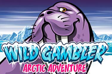 Arktička avantura