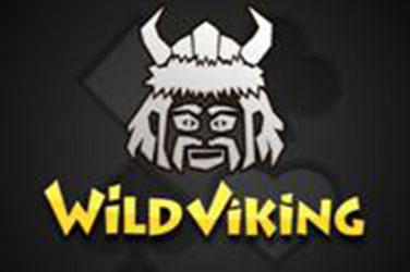 Divoký viking