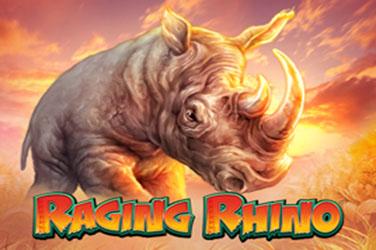 Wściekły nosorożca