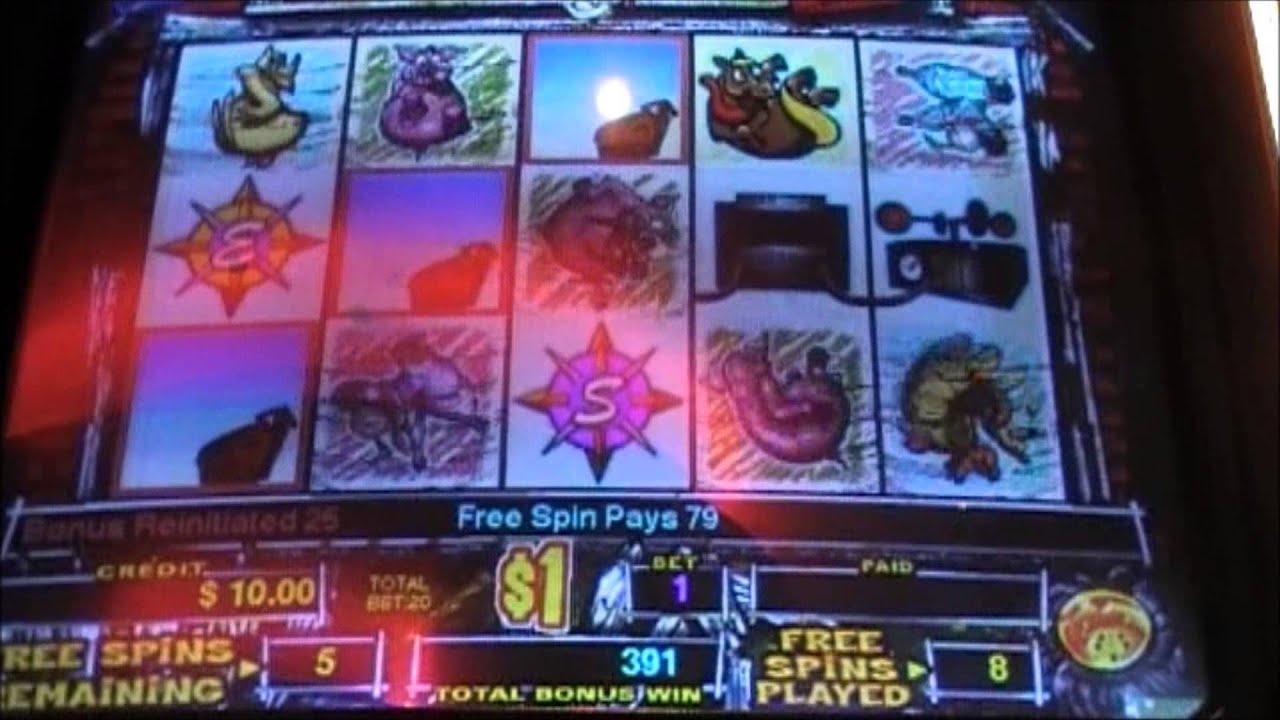 50% Match dans un casino à Rizk