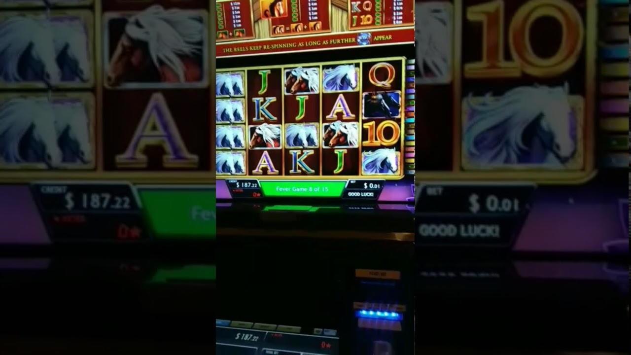 $ 290 Online Casino Tournament في كازينو الطرف