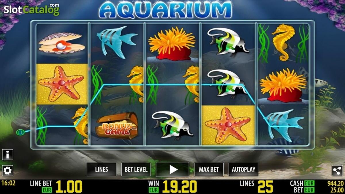 30% Ոչ կանոնային բոնուս: Reef Club- ում