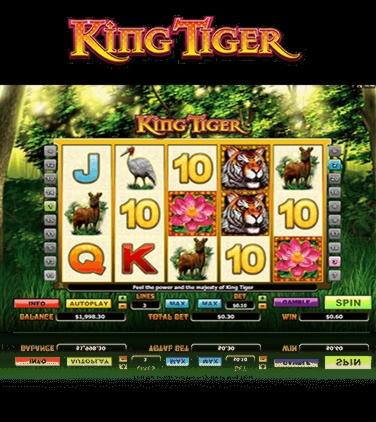 在Casino.com上获得$ 315免费资金