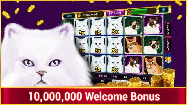 325%在Party Casino匹配奖金赌场
