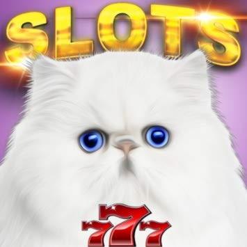 €600在Party赌场的在线赌场锦标赛