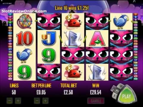 835% խաղատան բոնուսը Casino.com- ում