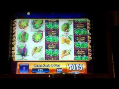 Party Casino的EURO 495每日免费比赛老虎机锦标赛