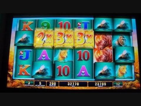 Sloto'Cash的$ 575每日免费比赛老虎机锦标赛
