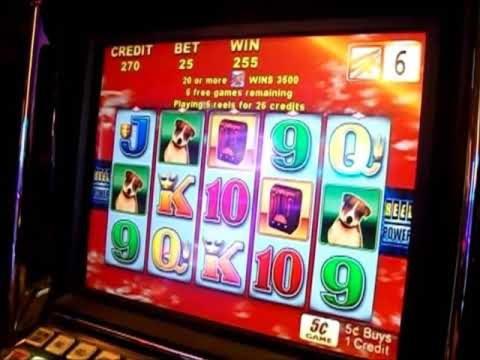 沙漠之夜$ 780赌场锦标赛免费比赛