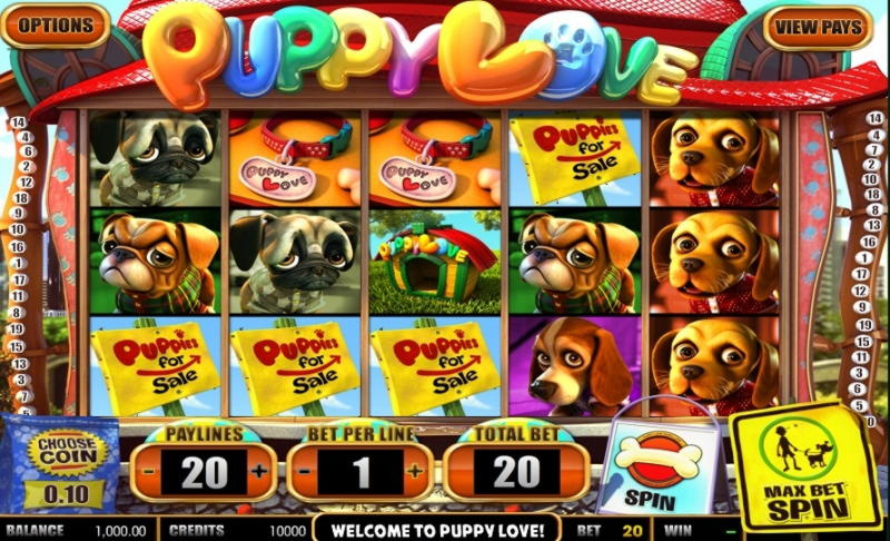 €135 Casino tournaments freeroll at 24 VIP Casino