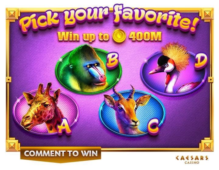 """270% rungtynės kazino """"Flume"""" kazino"""