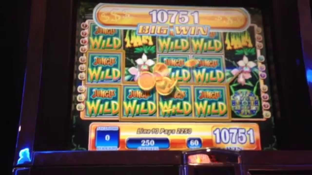 Speedy Bet-də Eur 105 heç bir depozit bonus casino