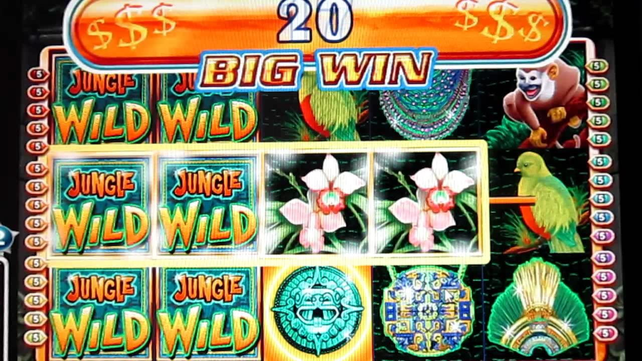 205 free spins casino at IVI Casino