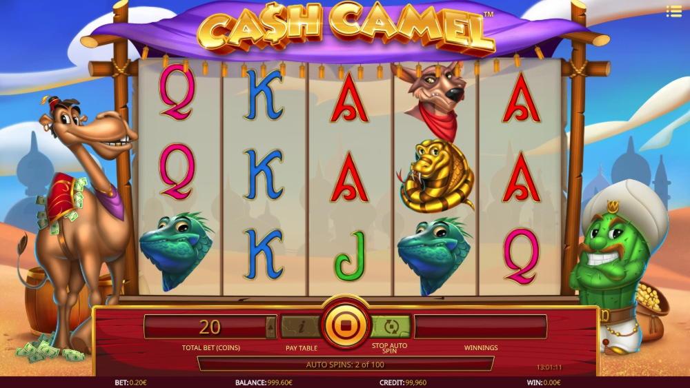 Mega Casino的$ 230免费筹码