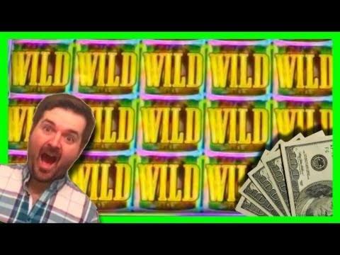 $ 950 անվճար խաղարկային խաղարկություն Lucky Dino- ում