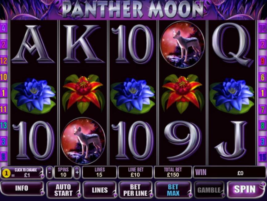 €140每日免费比赛在Casino King举行