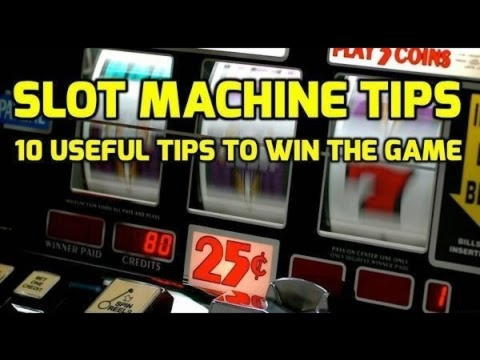 $180 Free Chip at Casino Dingo