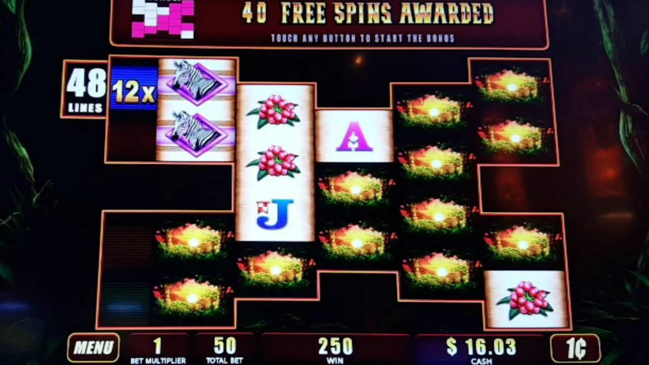 € 505 No Casino Bonus de Depunere la Party Casino