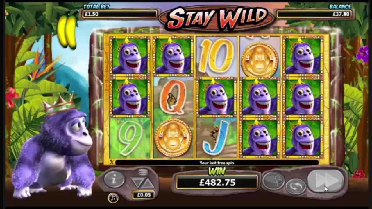 300 Тегін Spin Casino.com сайтында депозиттер жоқ