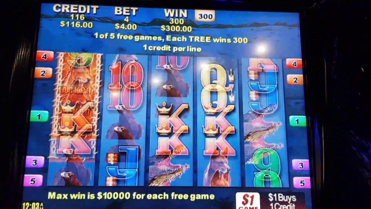 55 FREE Spins v kasíne-X