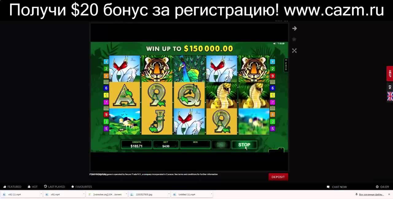 EUR 300 Casino Chip bei bWin