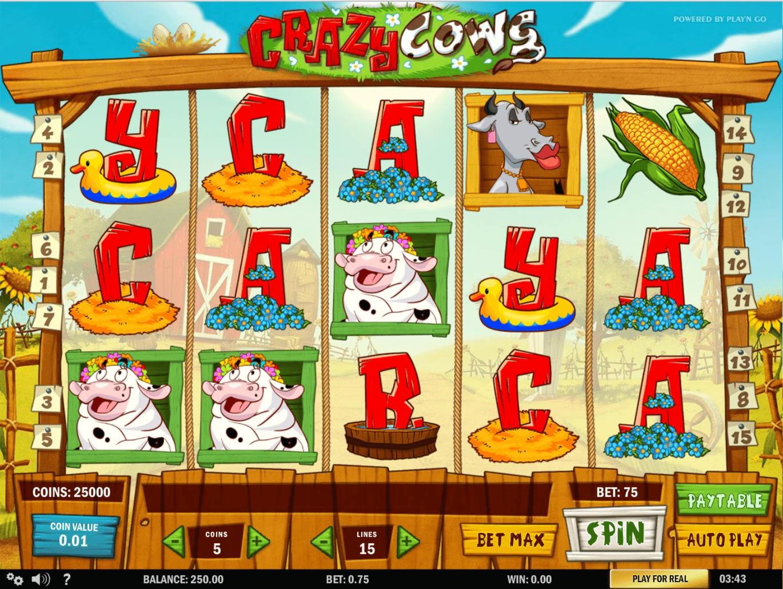 """""""125 Free"""" sukasi jokių indėlių kazino """"Wink Slots"""""""