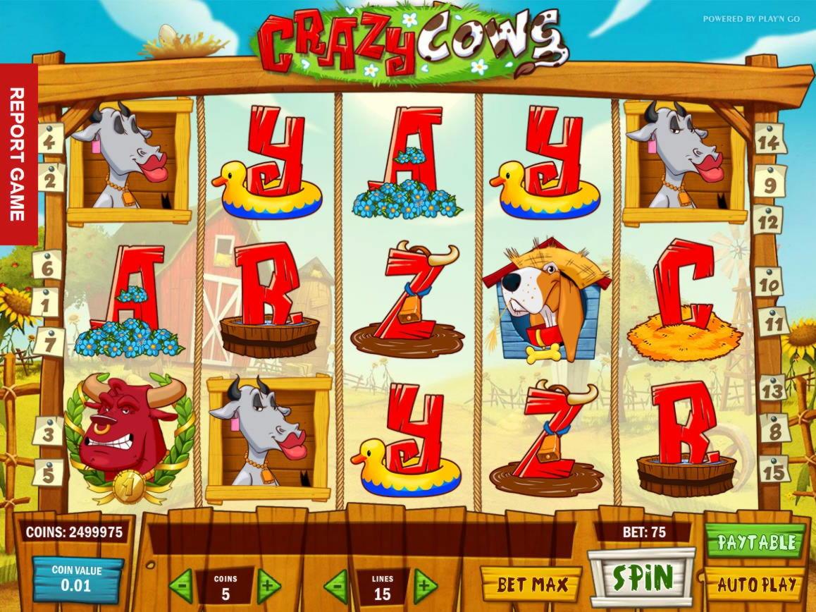 225 тегін казино казинода
