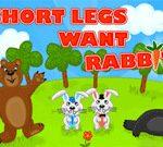 Ra'ayoyin Ra'ayoyin Ya Nema Rabbit