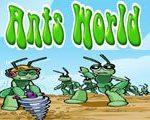 Mravenci svět