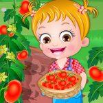 Бебешки лешник домати