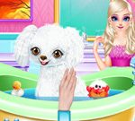 Princess Elsa New Poodle Friend