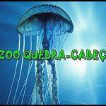 Zoo quebra-cabeça