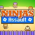 Asalto ninjas