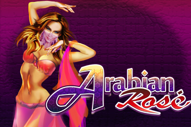 Arabian rose