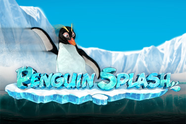 Splash pinguino
