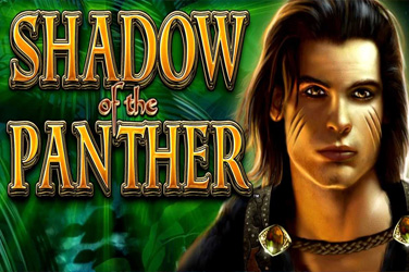 Shadow of panther