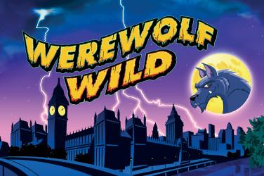 Weerwolf wild
