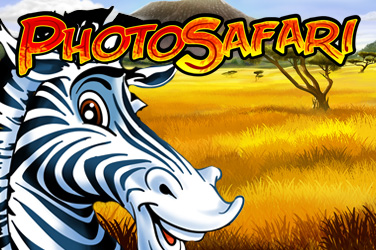Safari photo