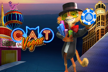 Cat am vegas