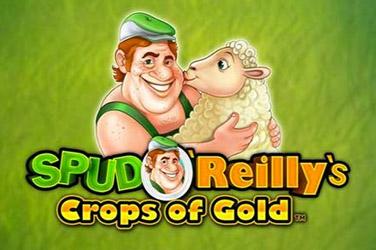 Spud o'reilly's