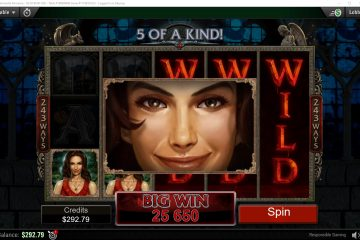 Image result for immortal romance slot big win