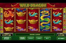 Resultado de imagem para slot de slot Wild Dragon