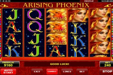 Image result for Arising Phoenix slot