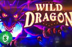 Bilderesultat for Wild Dragon spilleautomat