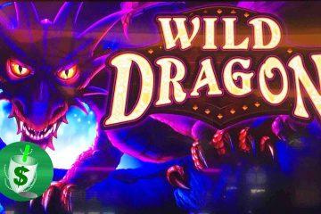 Hasil gambar pikeun slot slot Wild Dragon
