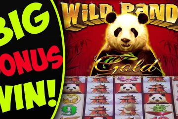 Image result for Big panda slot win