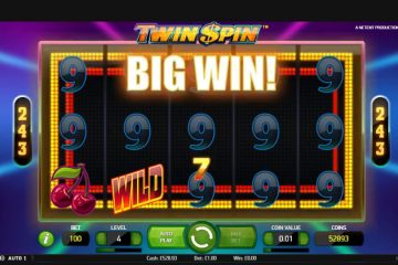 Image result for Twin Spin slot win