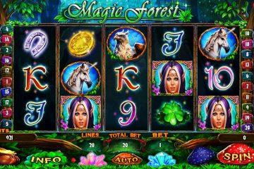 Niðurstaða myndar fyrir Magic Forest rauf