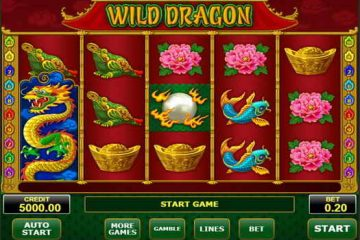 Image result for Wild Dragon slot